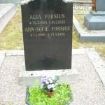 Alvas grav, Näse begravningsplats, avd. 17